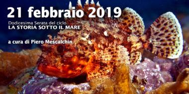 Dodicesima Serata - Tegnue 2019